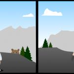 Cosas que les gusta hacer a los osos
