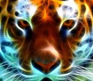 tigre-fractal