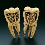 Dentro del diente
