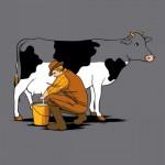 Ordeñando la vaca