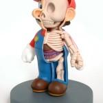Aprendiendo anatomia con Mario