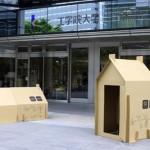 Casas de carton para emergecias